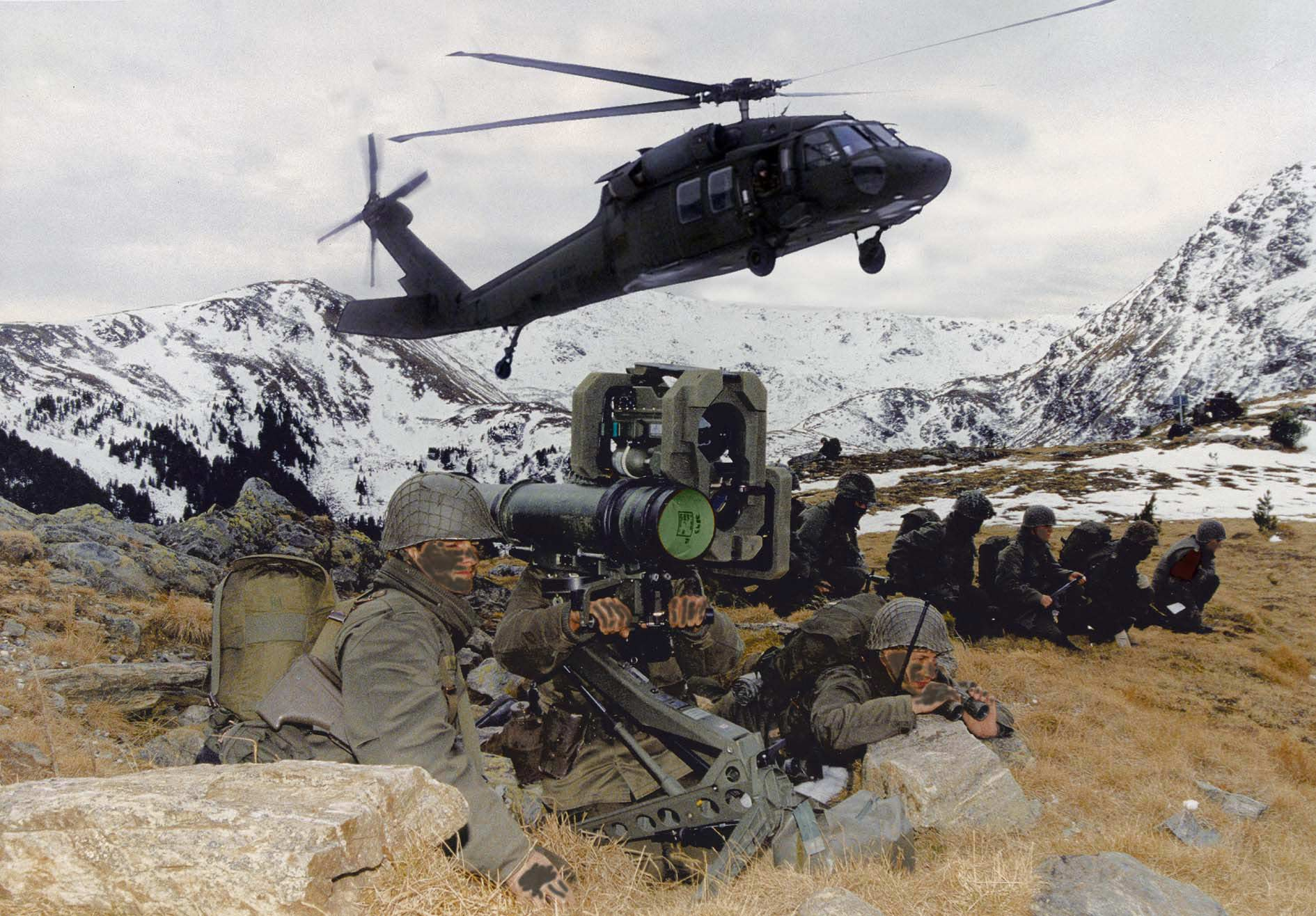 austrian armed forces - information in english